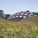 California-academy-of-sciences-green-roof