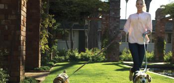 Garden El Encanto