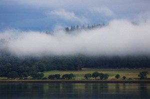 Low Lying Cloud Over A Forest And Trees Reflected In A Tranquil Lake With Sheep Grazing In A Field; Inverness Scotland