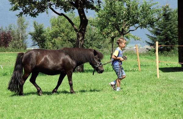 Visitare Innsbruck e dintorni con bambini: pony