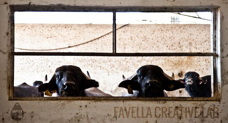 favella-creative-lab-agenda-viaggi-2-700