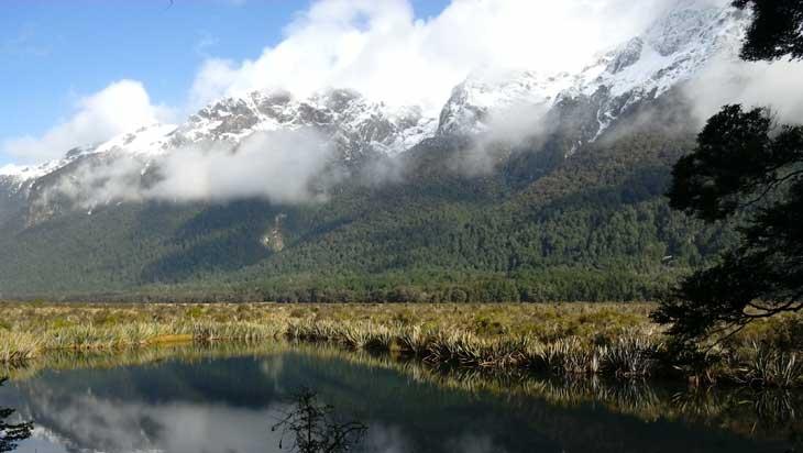 Fiordiland-National-Park-Nuova-Zelanda-701