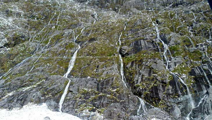 Fiordiland-National-Park-Nuova-Zelanda-702