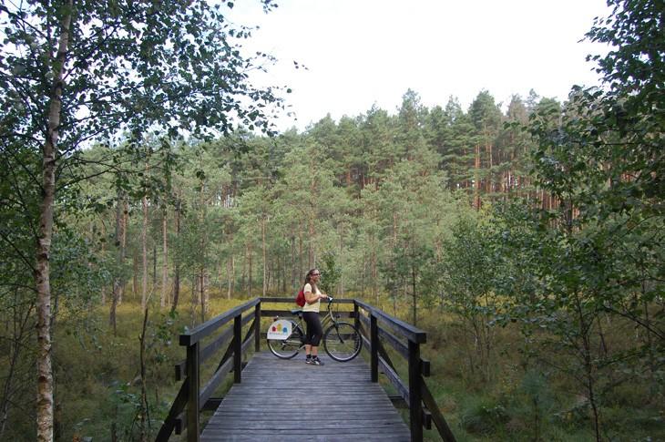 viaggiare-in-polonia-in-bici-704