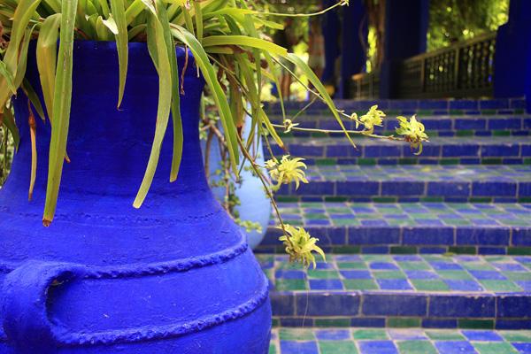 Un angolo dei Jardins Majorelle, con il celebre blu Majorelle. Foto di Elena Bianco