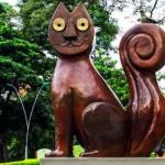 Visita-El-gato-del-rio-cosa-fare-a-cali-colombia-300