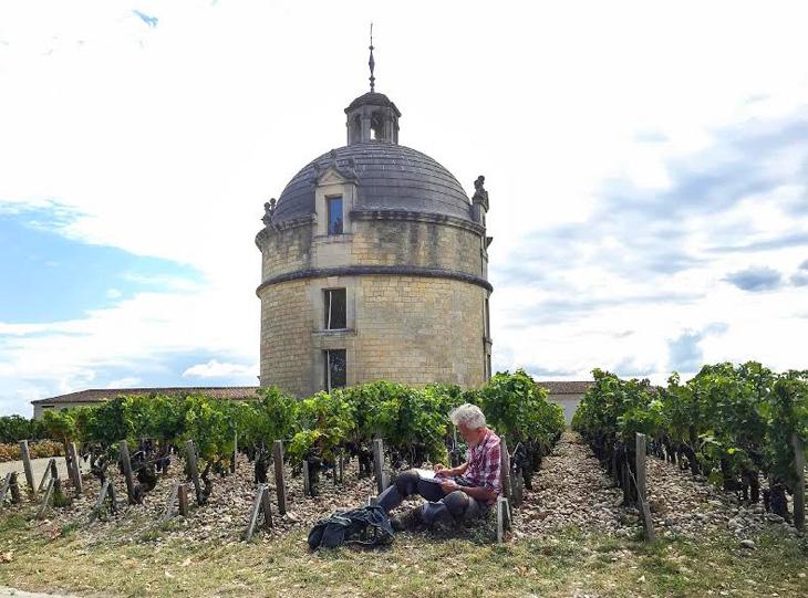 vino-italiano-2015-730