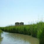 Villaggio Turistico Barricata - Itinerari Delta Po essicatoi