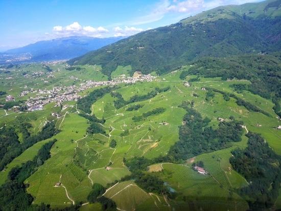 Le colline di Conegliano Valdobbiadene dall'elicottero. ph Elena Bianco