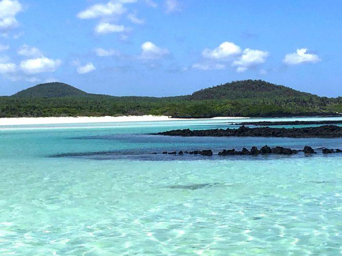 Il paradiso terrestre esiste davvero e prende il nome di arcipelago delle Galapagos!