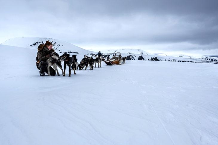 Storie apparentemente lontanissime fra loro, storie di terra ghiacciata, di orsi polari e uomini che si contendono un confine invisibile