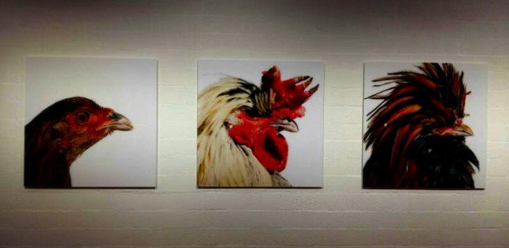 Koen Vanmechelen l'artista limburghese al Teatro dell'architettura di Mendrisio