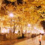 Tra installazioni luminose e nuovi indirizzi Tokyo accoglie il nuovo anno con speciali installazioni luminose in tutta la metropoli. Inoltre presenta tre nuove aperture per addolcire e riscaldare il freddo delle lunghe giornate invernali.