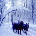 10 buoni motivi per scegliere questa valle del Trentino. Suggerimenti di viaggio.
