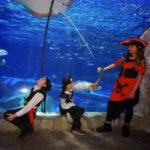 Grandi e piccoli in maschera, al via il Carnevale a Gardaland SEA LIFE Aquarium