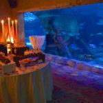 A San Valentino? Gardaland SEA LIFE Aquarium dedica una serata esclusiva per 20 coppie