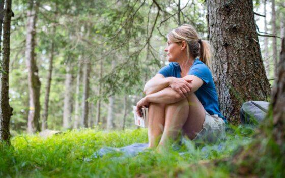 Programmare una vacanza rigenerante dove praticare il Forest Bathing
