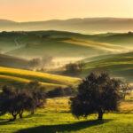 C'è una Toscana ancora da scoprire. Autentica e segreta. Un territorio che arriva al mare attraverso colline, boschi, oliveti, vigneti, antichi borghi, ville grandiose. E attraverso un fiume, l'Arno, che compie in queste terre l'ultimo suo tratto d'esistenza prima di sfociare in mare.