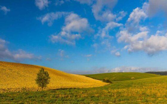 """La Toscana da scoprire: tornare indietro nel tempo nella vacanza verde delle """"Terre di Pisa"""""""