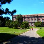 Weekend di Ferragosto al Museo e Real Bosco di Capodimonte
