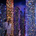 Gli acquari a Tokyo, uno spettacolo unico