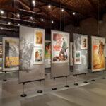 Collezione Salce e della mostra Renato Casaro a Treviso.