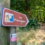 In arrivo il Francigena Fidenza Festival 2021: Fidenza al centro della Via Francigena per promuovere cammini e territorio