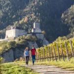 Tirolo, un borgo Di-Vino